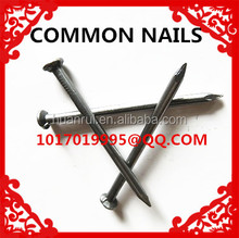 high quality electro galvanized common nails ( 15 years factory , competitive price )