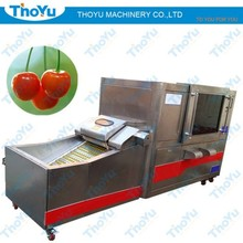 Pitting machine for process date and Iraq dates and India date