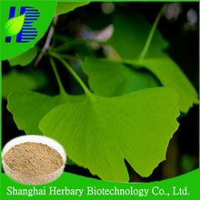 Natural medicinal herb extract, ginkgo biloba powder extract for lower blood pressure