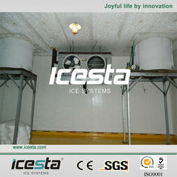 Icesta 100T daily large Containerized Flake Ice factory China ice supplier