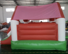 china funny jumping park, inflatable bouncer for sale, giant inflatable bouncer