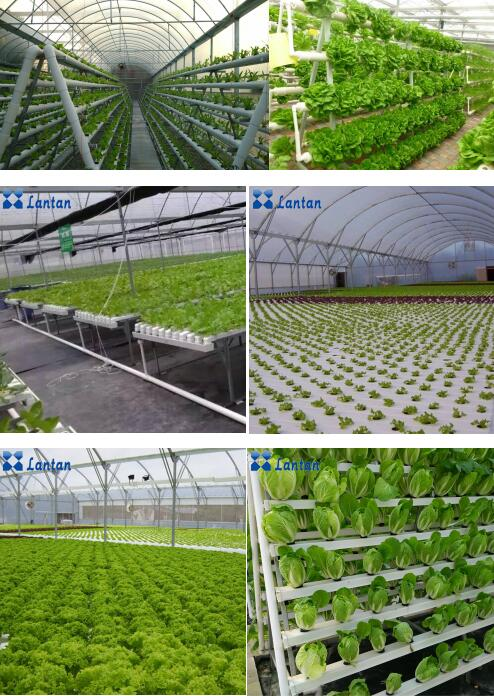 Wholesale Greenhouse hydroponics systems PVC NFT pipe with net pots