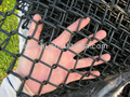 6 foot PVC Coated Black Color Chain Link Fence