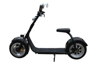 2016 new two wheel citycoco motor car electric motorcycle supplied by our factory