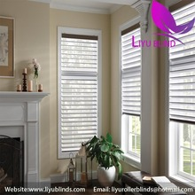 Liyu exterior doors internal soundproof home center blinds