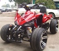 bashan 300cc street legal racing atv in ATV 4X2WD with 4 wheels