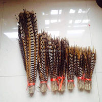 wholesale decorative reeves pheasant tail feather 30-35cm