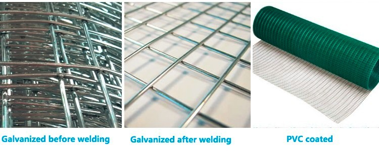China Manufacturer metal mink cage / galvanized iron welded wire mesh / the chicken cages(manufacturer in china)