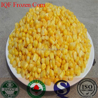 IQF frozen sweet corn 25kg woven bag 10kg carton for Pakistan USA Russia