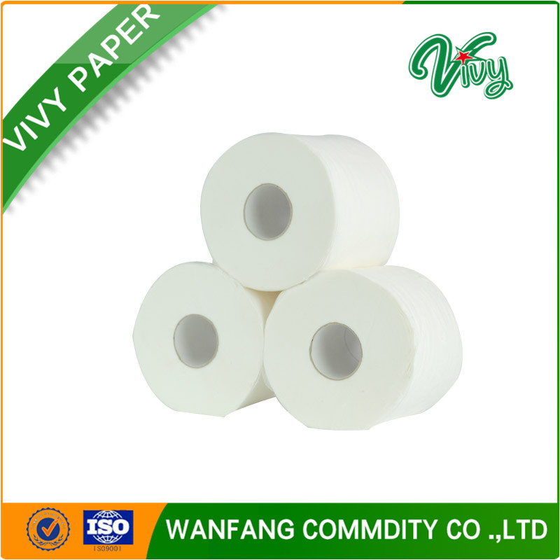 Standard roll size Toilet Tissue Paper in Bathroom