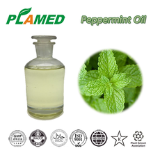 Plamed Supply Organic Peppermint Extraction Peppermint Oil