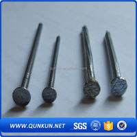 good qality common nails/Common Wire Nail/ polished common iron nails