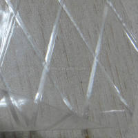 Transparent PET Coated Polyester Fabric For