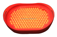 Small Home Red Light Therapy Device better than Infrared Therapy to enhancing wound healing and attenuating pain , Acne