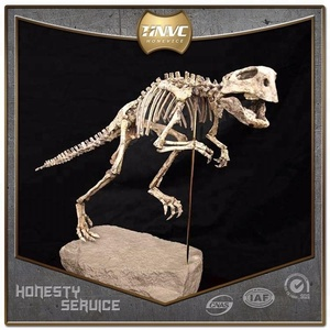 Customized Robotic Life-size T-Rex Dinosaur Fossils for Sale