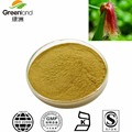 Corn Stigma extract, corn silk extract powder 5:1-20:1(Zea mays L.) Saponins Herbal Extract