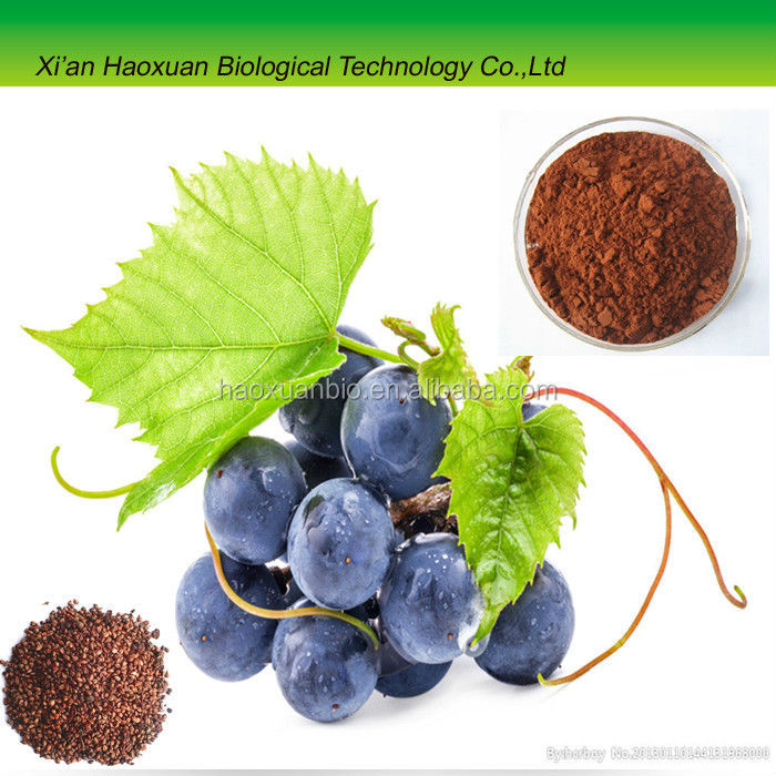 High purity Grape seed Extract 95% OPC