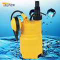 Economic Dirty Water Garden Submersible Pump