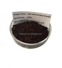 wholesale sporoderm-broken extract, Lucid Ganoderma Extract , Lingzhi Spore extract