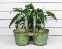 Cheap!!! Unique Green Rust Designed Shabby Chic Small Decorative Metal Tin Flower pot/Container/Antique Buckets for Garden/Home