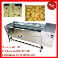 MSTP-1000 automatical stainless steel brush carrot washing peeling attrition polishing machine
