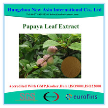 100% Pure Water Soluble Papaya Leaf Extract
