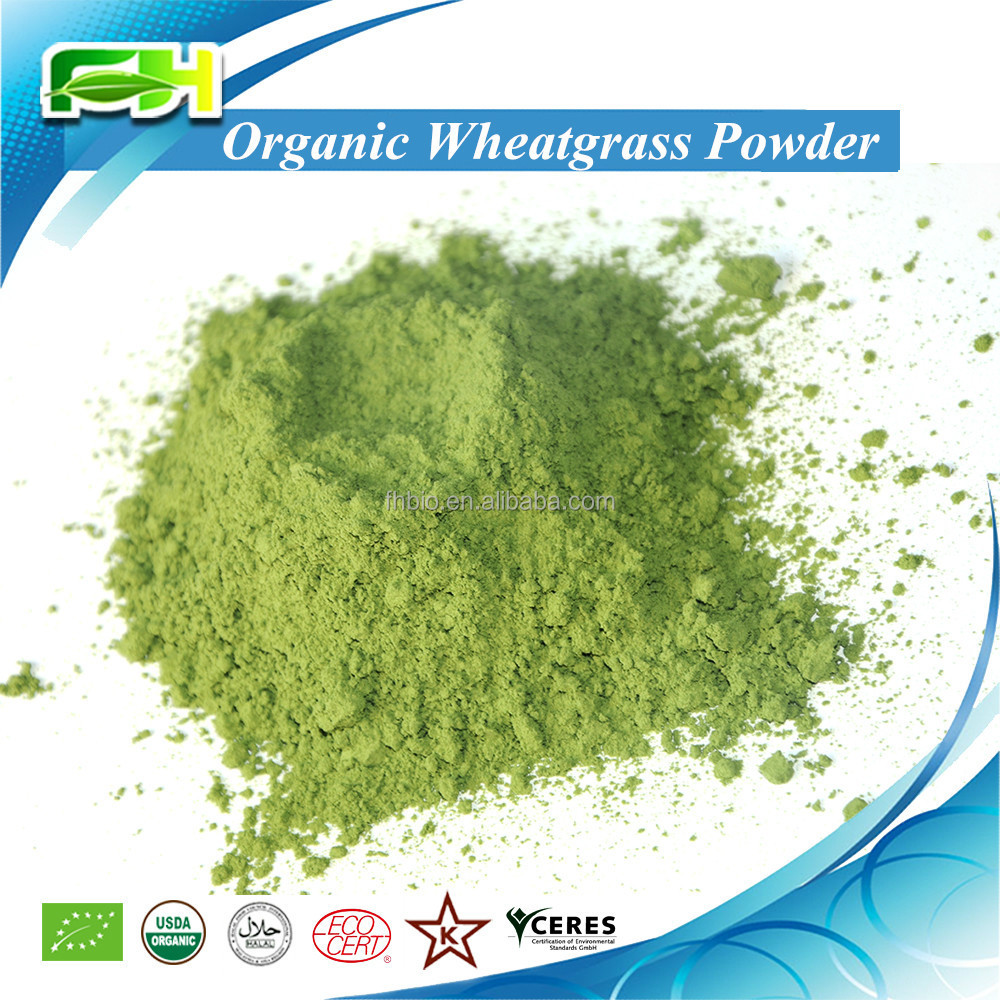 Wheatgrass <strong>Powder</strong> (100 grams of samples free of charge)