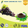 100% natural Proanthocyanidins organic grape seed extract powder