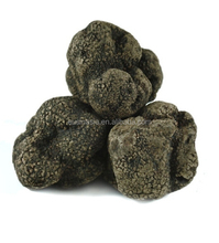 New Dried Matured Truffle Market Price for Tuber Indicum