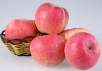 China supply good price delicious new season grade A red fuji fresh apple