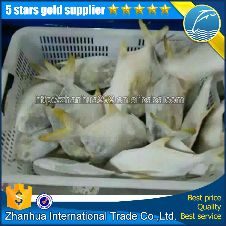 premium quality new products frozen gloden pomfret fish aquarium