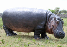 Hot sale hippopotamus hippo statue fiberglass resin statue garden decoration