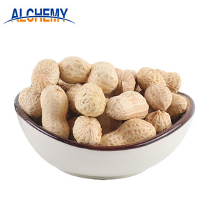 raw peanuts in shell roasted peanut for sale