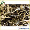 Pure Old Tree Yunnan Yue Guan Bai Moon Ligh White Tea