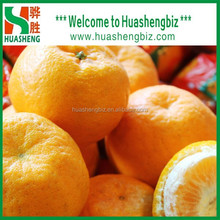 Wholesale Prices Chinese Lugan/Lokam/Ponkan Mandarin Orange