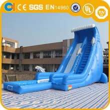 Amazing Inflatable Blue Water Slide, Outdoor inflatable dolphin slide with pool, giant inflatable slide