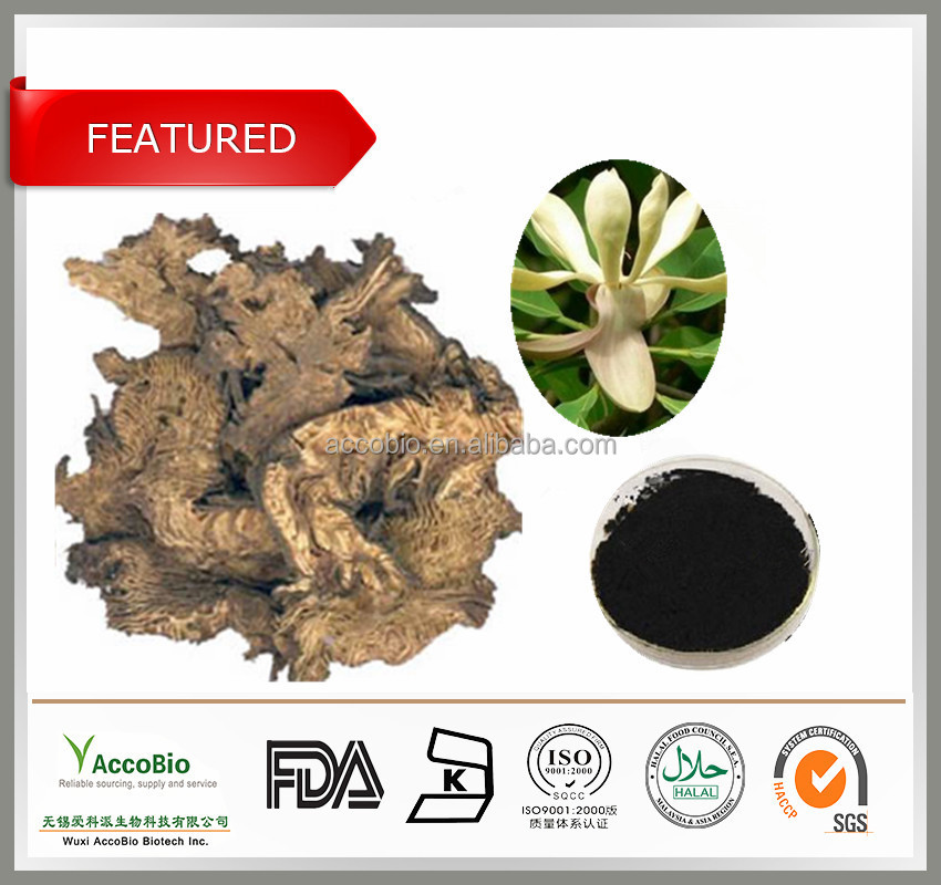 High Quality 100% Nature Cimicifuga Racemosa Extract 2.5-8%Triterpene Glycosides Powder