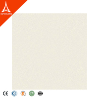 New products style wear-resistant 200x200mm 300x300mm 315x315mm square ceramic floor tile