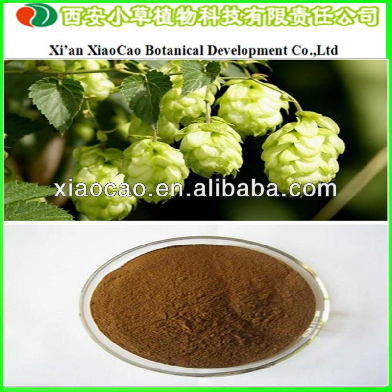 Manufacturer Supply High Quality Beer Hops Extract 10:1/European Hop Flower Extract