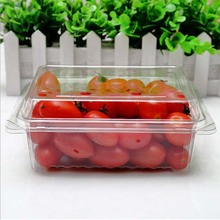 Blister large clear plastic fruit container with lid for fruit packaging