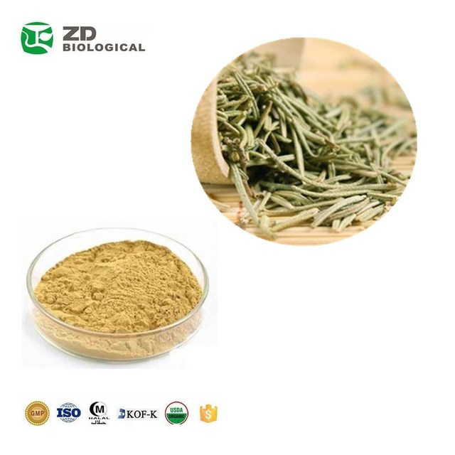 GMP certificated Cosmetic Raw Material Rosemary Extract