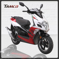 TAMCO T50QT-19-RACING-b 150cc mini motorcycle for sale