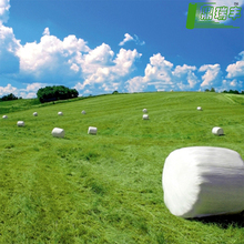Good quality plastic mulch/Greenhouse packaging mulch jumbo rolling Plastic agricultural silage film silage