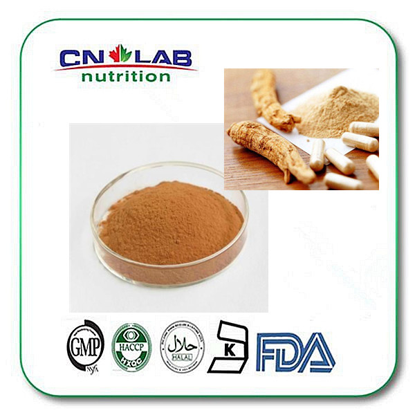 pure organic Angelica root extract Powder,organic angelica powder