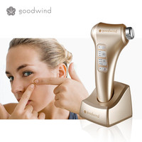 high tech Portable Ultrasonic Beauty Hot Sale search product