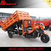 tipper cargo tricycle/250cc trike/Hydraulic 3 wheel motorcycle