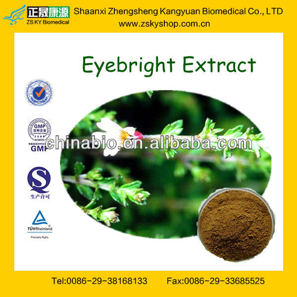 GMP Manufacturer Supply Eyebright Leaf Extract