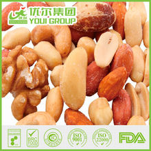 BRC Certified Salted roasted nuts mix snacks (almond, peanut, cashew nut, walnuts,hazelnuts)