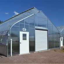 High Quality Film / High Tunnel Greenhouse for Agricultural