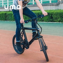 E Bike Road Motor Trotter Covered Electric Bicycle 2017